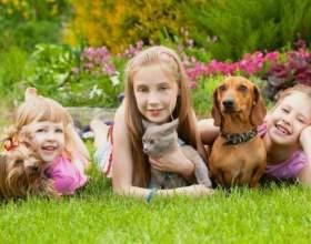 Домашні тварини в житті дитини фото