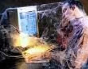 Інтернет в житті сучасної людини фото