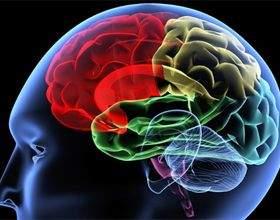 Як змусити свій мозок працювати на 100 відсотків фото