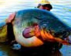 """Риболовля в астрахані С""""РѕС'Рѕ"""