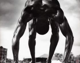 Соціально-психологічні чинники формують імідж спортсмена фото